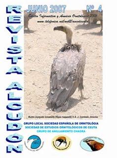 imagen portada Alcudón 4