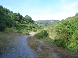 imagen del arroyo de calamocarro