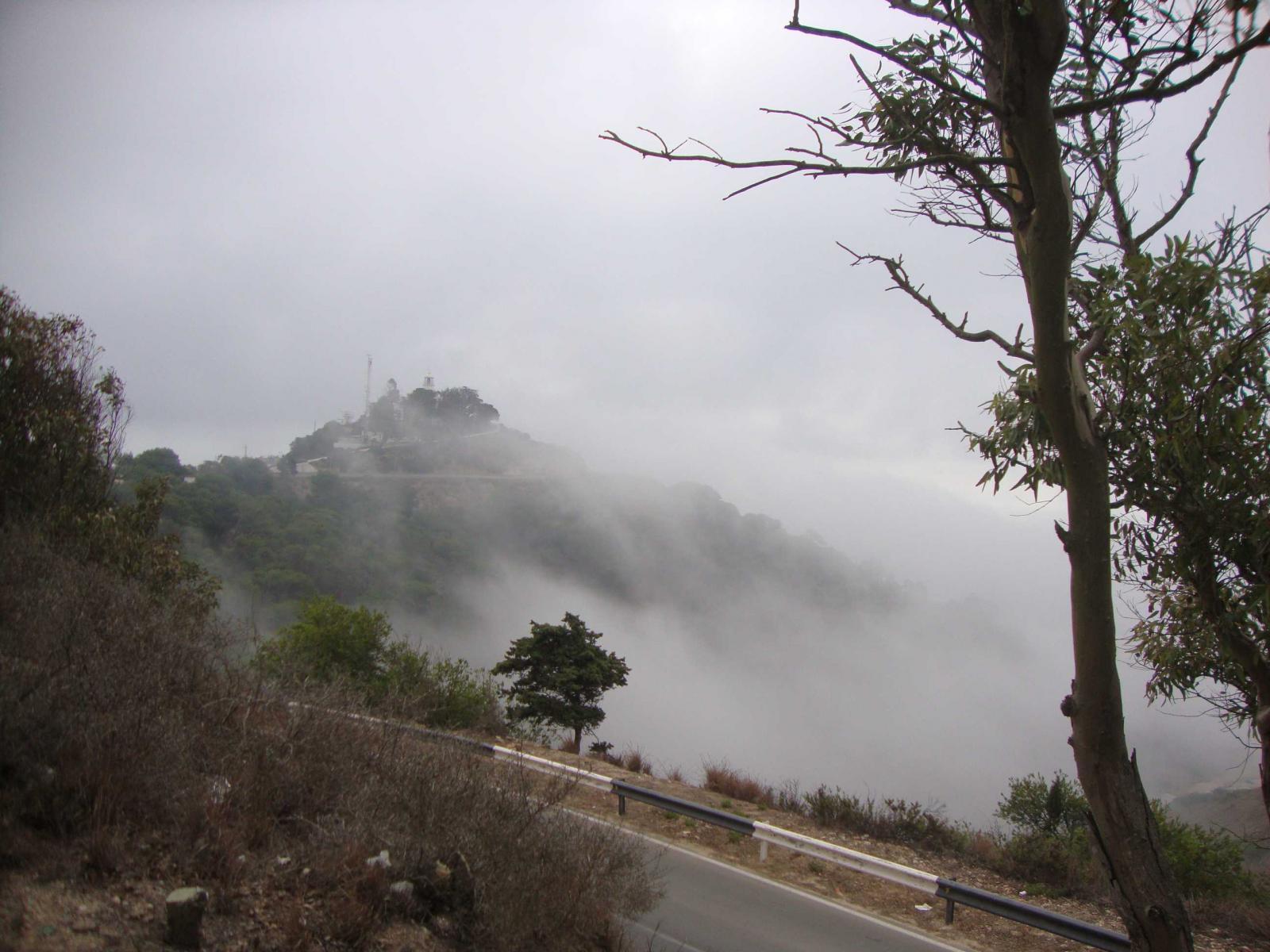 Faro y niebla