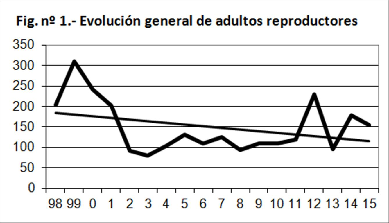 Figura 1 Paser 2015.